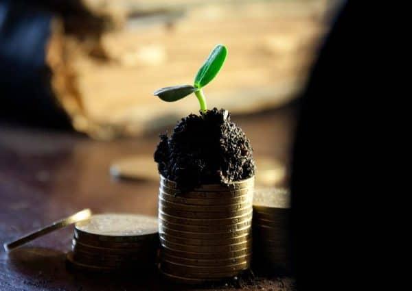 Qu'est ce que le revenu ? Une pile de monnaie couverte de terreau avec une plante qui pousse.