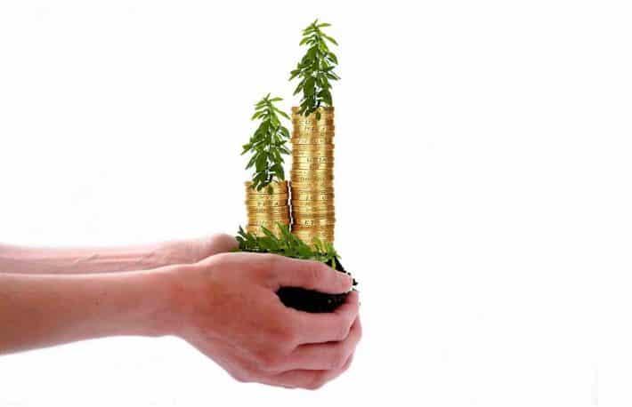 Capacité d'investissement. La main verte de l'argent. Des pièces d'or qui poussent dans une main.