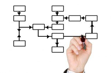 quel type d'entreprise créer. Organigramme.